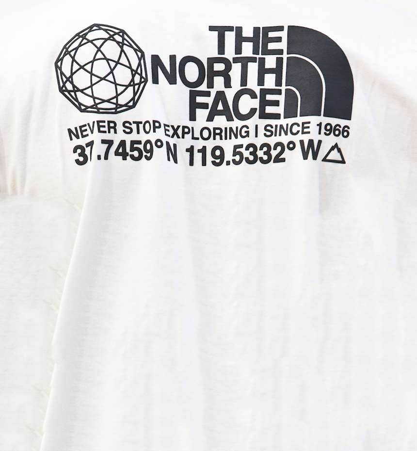 T-SHIRT THE NORTH FACE COORDINATES